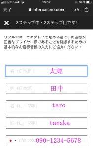 インターカジノ登録方法画面5