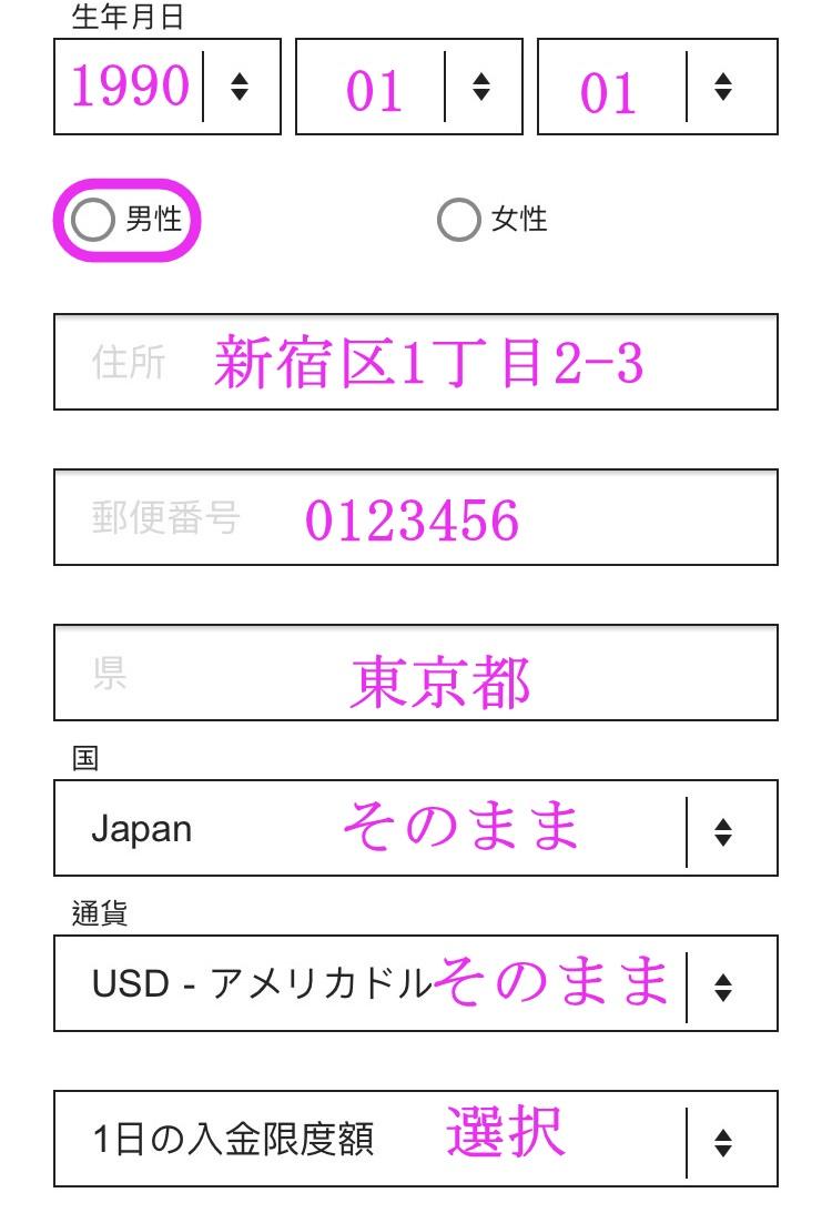 インターカジノ登録方法画面6