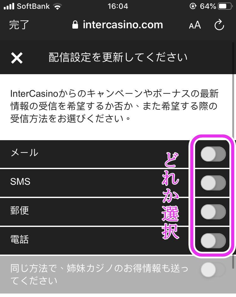インターカジノ登録方法画面8