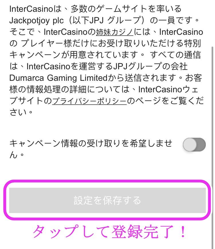 インターカジノ登録方法画面9