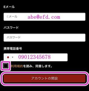 ライブカジノハウス登録画面3