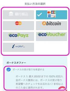 クイーンカジノ登録画面7