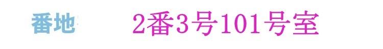 ワンダリーノ登録画面13
