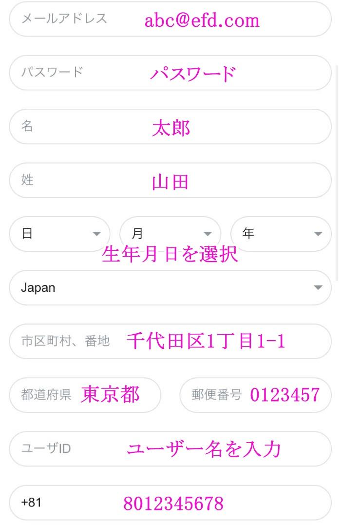 カジノX登録画面3